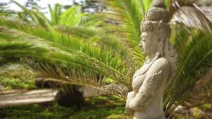 Dreams-Can-Come-True-Yoga-Retreat-in-Chile-February-and-March-2014-3